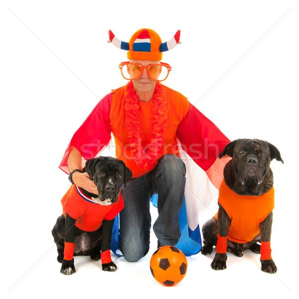 Człowiek psów holenderski piłka nożna kolory Zdjęcia stock © ivonnewierink