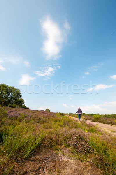 Stockfoto: Landschap · paars · lopen · man · pad · natuur