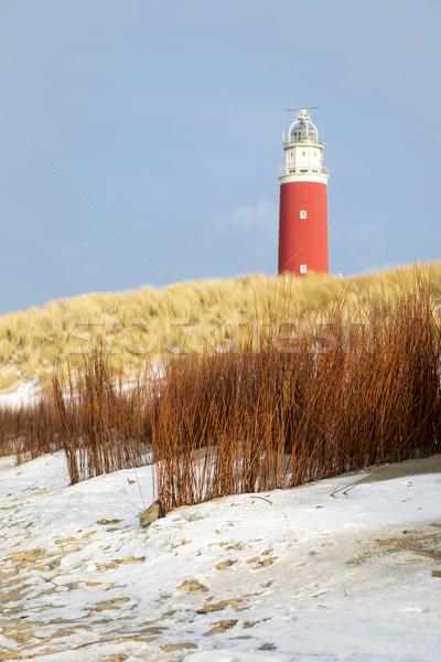 Winter at the coast Stock photo © ivonnewierink