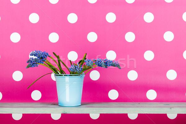 Mavi üzüm kova pembe Paskalya çiçekler Stok fotoğraf © ivonnewierink