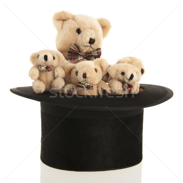 Gevuld beren zwarte lang hoed zijde Stockfoto © ivonnewierink