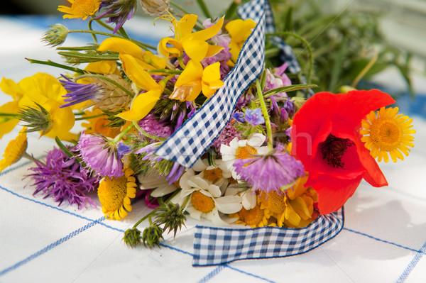 Still life wild flowers Stock photo © ivonnewierink