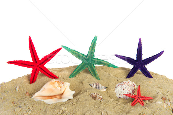 Colorful starfishes at the beach Stock photo © ivonnewierink