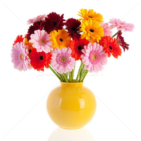 Bouquet Gerber flowers in glass vase Stock photo © ivonnewierink