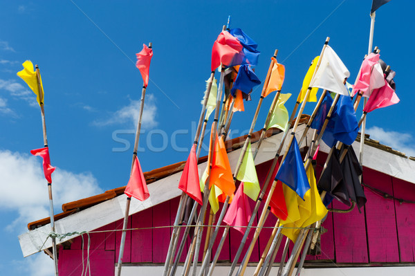 Colorful fisherman flags Stock photo © ivonnewierink