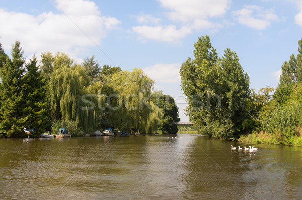 голландский реке пейзаж спокойный лет лодка Сток-фото © ivonnewierink