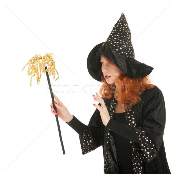 зла ведьмой изолированный белый Сток-фото © ivonnewierink