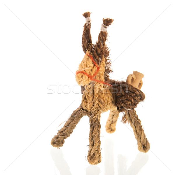 Spanish donkey Stock photo © ivonnewierink