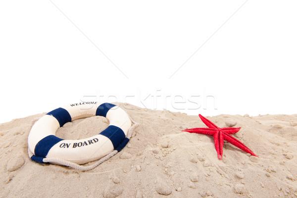 Reddingsboei strand welkom boord achtergrond Blauw Stockfoto © ivonnewierink
