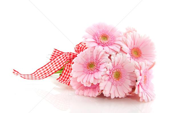 Rosa ramo cinta blanco Foto stock © ivonnewierink