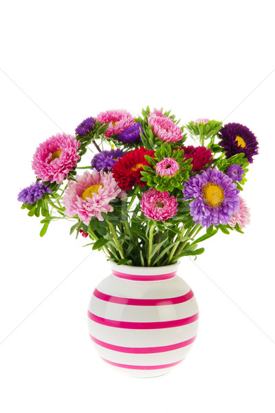 Bouquet New England Asters in vase Stock photo © ivonnewierink