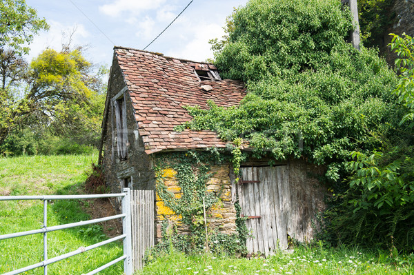 French broken house Stock photo © ivonnewierink