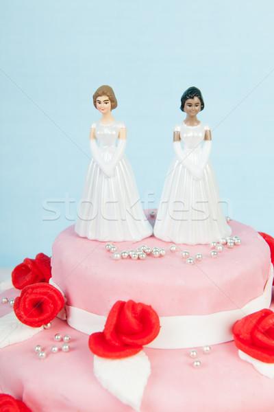 Wedding cake with lesbian couple Stock photo © ivonnewierink