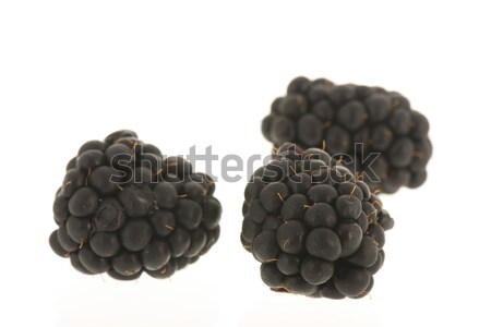 Blackberries isolated over white Stock photo © ivonnewierink