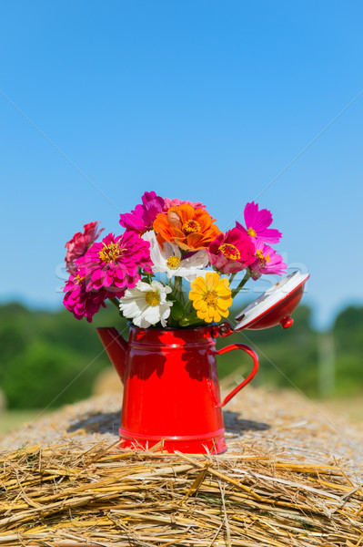 Bouquet flowers in summer Stock photo © ivonnewierink