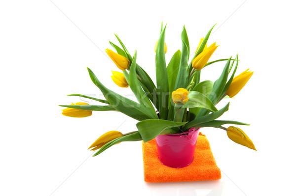 Yellow tulips Stock photo © ivonnewierink