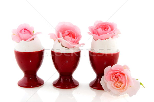 ピンク バラ 赤 卵 カップ 白 ストックフォト © ivonnewierink