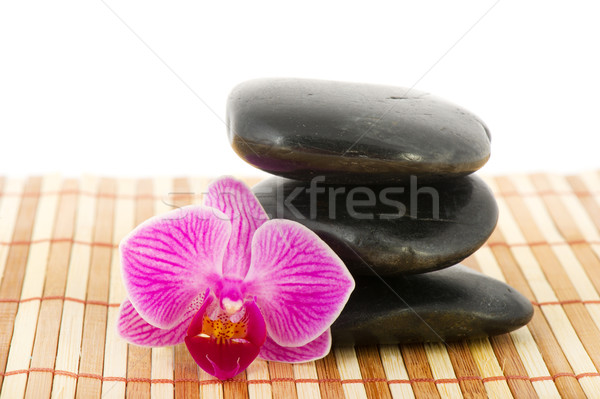 Tropical pink orchid in wellness setting Stock photo © ivonnewierink