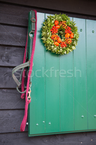 Stock photo: Horse rein at stable door
