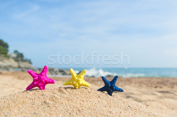 Colorful row starfishes at the beach Stock photo © ivonnewierink