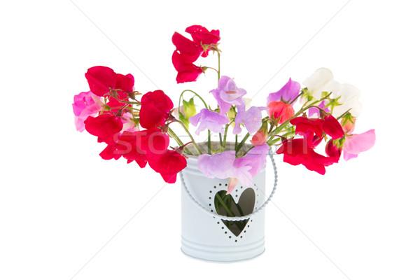 Bouquet Lathyrus Stock photo © ivonnewierink