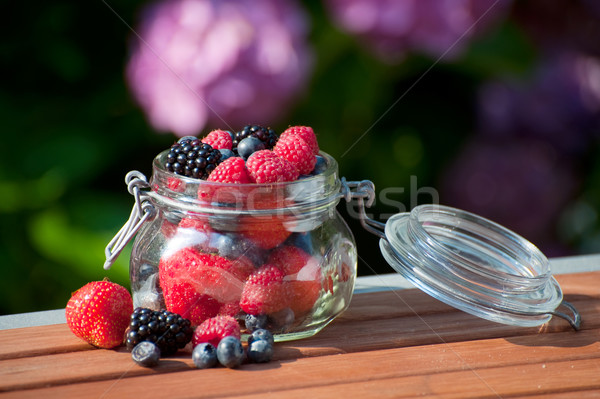 Forestales frutas aire libre diversidad vidrio jardín Foto stock © ivonnewierink