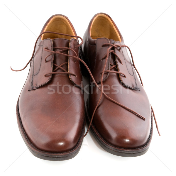 New polished brown shoes Stock photo © ivonnewierink