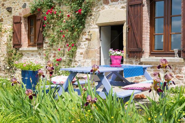 Picknicktafel tuin kleurrijk frans rozen Blauw Stockfoto © ivonnewierink