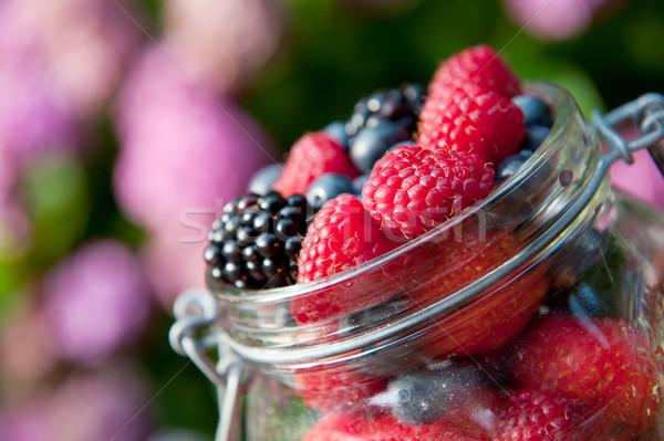 forest fruit outdoor Stock photo © ivonnewierink