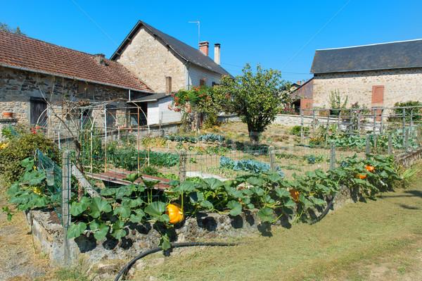 Vegetable garden in French hamlet Stock photo © ivonnewierink