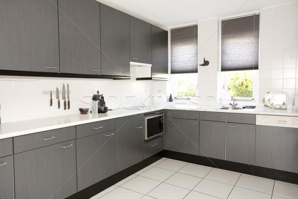 Modern kitchen Stock photo © ivonnewierink