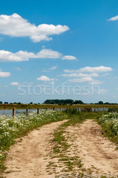 River the Lek in Holland Stock photo © ivonnewierink