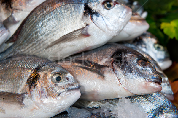 Photo stock: Poissons · magasin · alimentaire