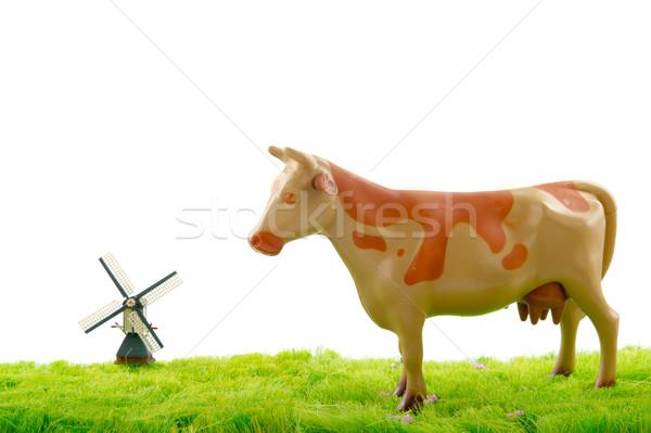 Dutch cow and windmill Stock photo © ivonnewierink