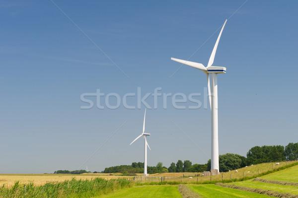 Szélturbinák mezőgazdaság tájkép Hollandia kukorica erő Stock fotó © ivonnewierink