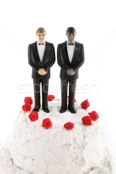 gay wedding Stock photo © ivonnewierink