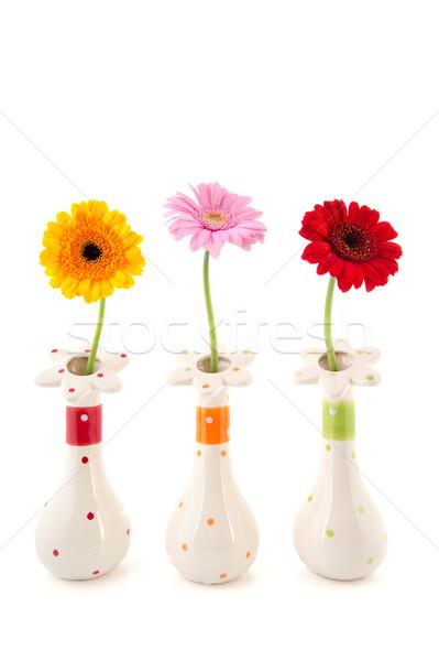 Gerber flowers in vases Stock photo © ivonnewierink