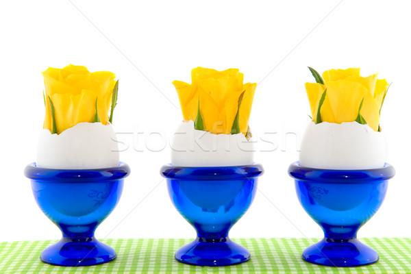 黄色 バラ 青 卵 カップ 卵 ストックフォト © ivonnewierink