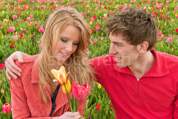 Holandés turistas tulipanes Pareja flor campos Foto stock © ivonnewierink