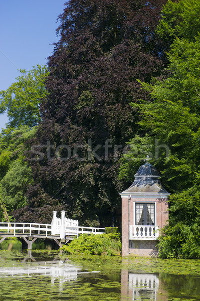 Little arbor and bridge Stock photo © ivonnewierink