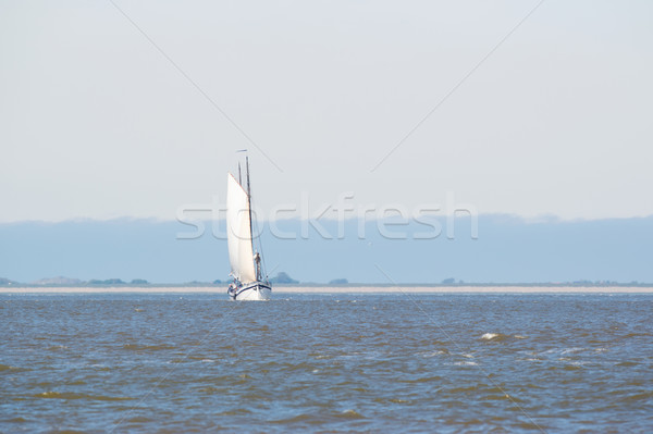 Clipper on Dutch wadden sea Stock photo © ivonnewierink
