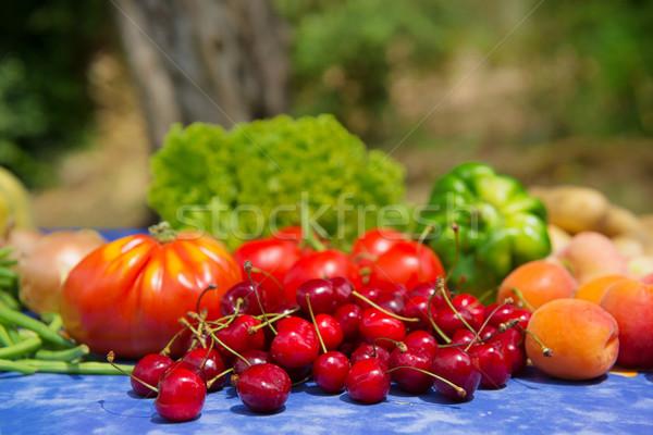Vruchten groenten frans tuin verse groenten for Groenten tuin
