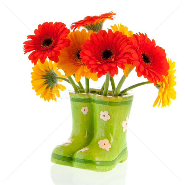Gerber flowers in green boots Stock photo © ivonnewierink