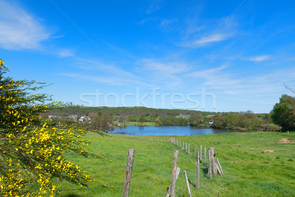 Landscape in French Limousin Stock photo © ivonnewierink