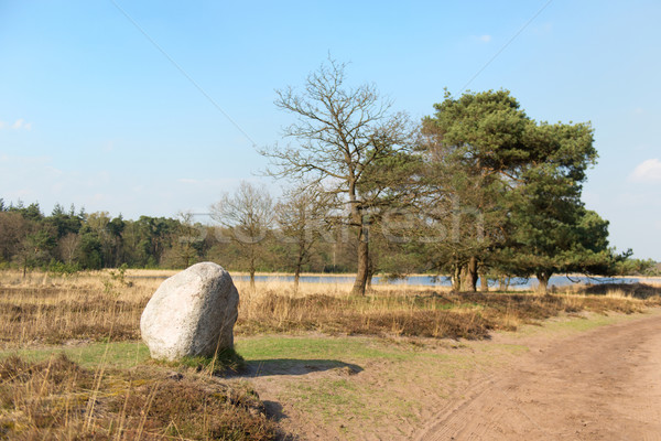 landscape with big stone and lake Stock photo © ivonnewierink