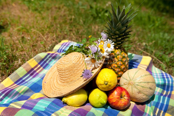 Still life fruits d'été extérieur fruits arbres Photo stock © ivonnewierink