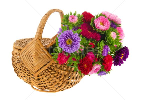 Bouquet New England Asters in basket Stock photo © ivonnewierink