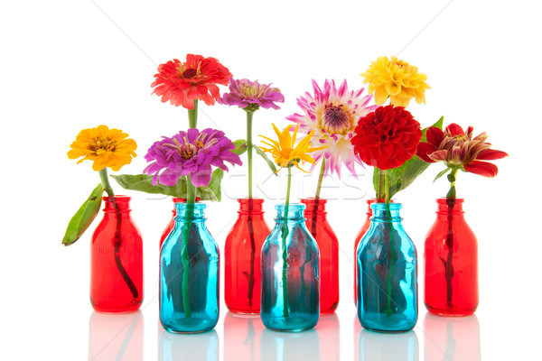 Colorful flowers in bottles Stock photo © ivonnewierink