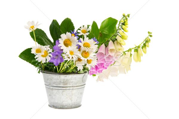 Purple Foxglove and white daisies in bucket Stock photo © ivonnewierink