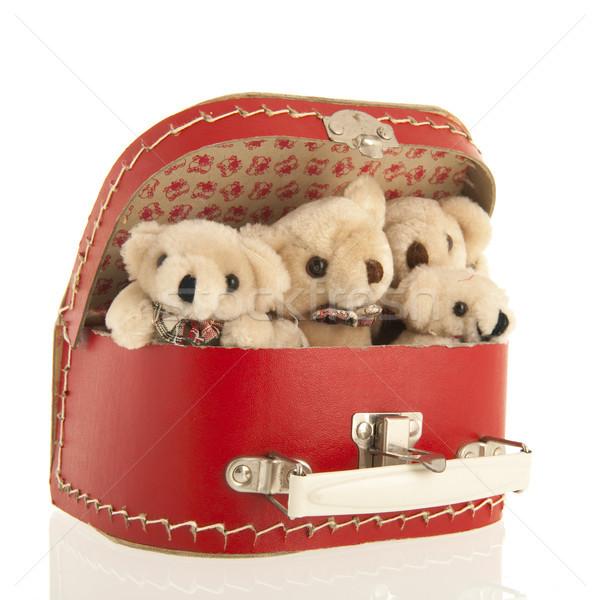 Vintage bears in suitcase Stock photo © ivonnewierink